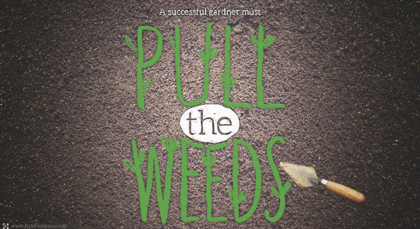 Pull the Weeds